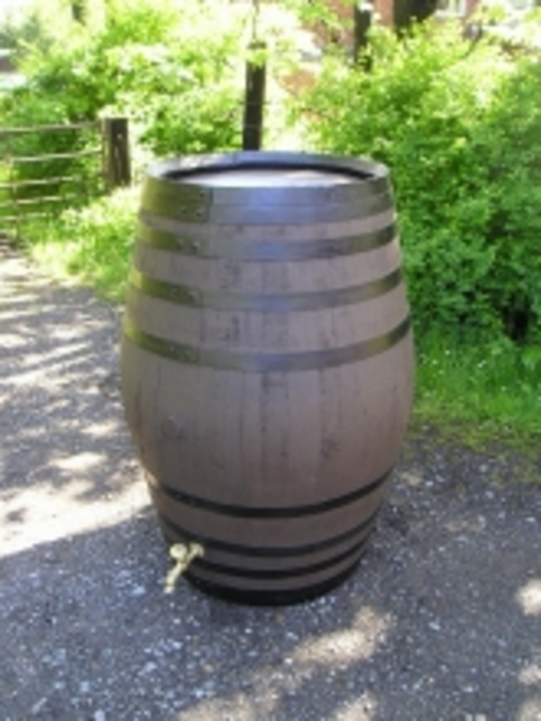 Barrel Amp Garden 100 Gallon Stained Oak Barrel Water Butt