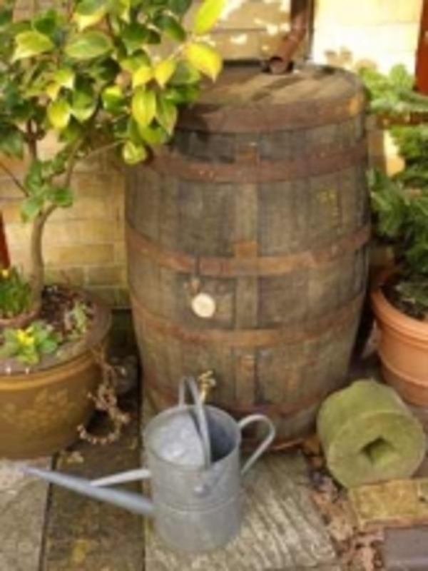 Barrel Amp Garden 40 Gallon Rustic Water Butt