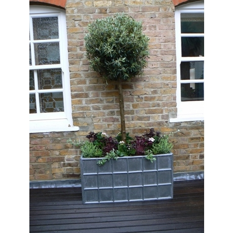 Downing Street Antique Faux Lead Planters
