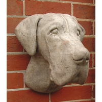 Great Dane Head Wall Plaque