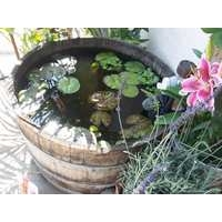 French Oak Wine Barrel Garden Pond - 110L