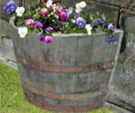 "24"" Half Moon Natural Finish Oak Tub Barrel Planter"