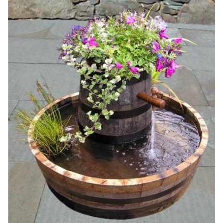 Mexican Hat Water Garden