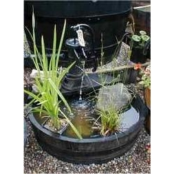 Shallow Pitcher Pump Water Garden